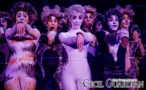 The ensemble of Cats at Milburn Stone Theatre