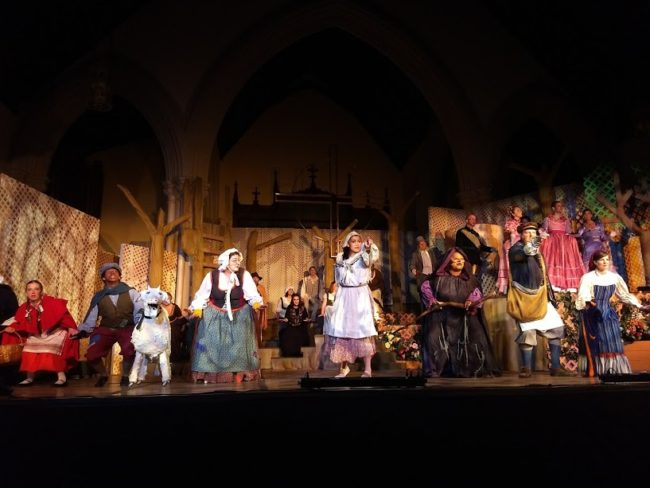 The Cast of Into The Woods at Memorial Players