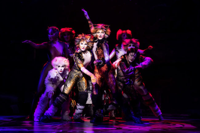 The North American Tour of Cats. Photo: Matthew Murphy